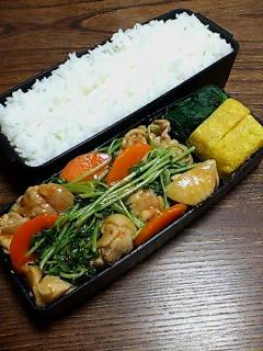 鶏肉と豆苗の炒め物