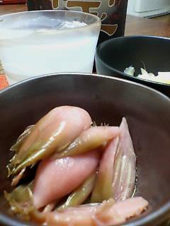 ミョウガの甘酢漬け