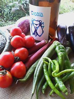 夏野菜とセミラベル
