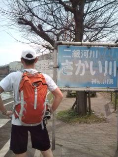 江ノ島花見ラン境川に入る