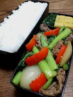 牛肉と小松菜のオイスター味噌炒め