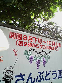 D1000016_1