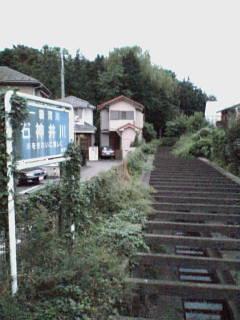 小金井公園付近