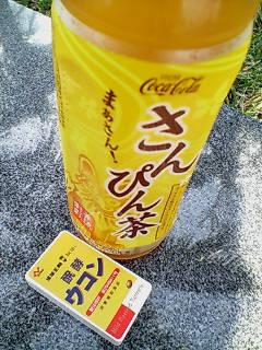 さんぴん茶と醗酵ウコン